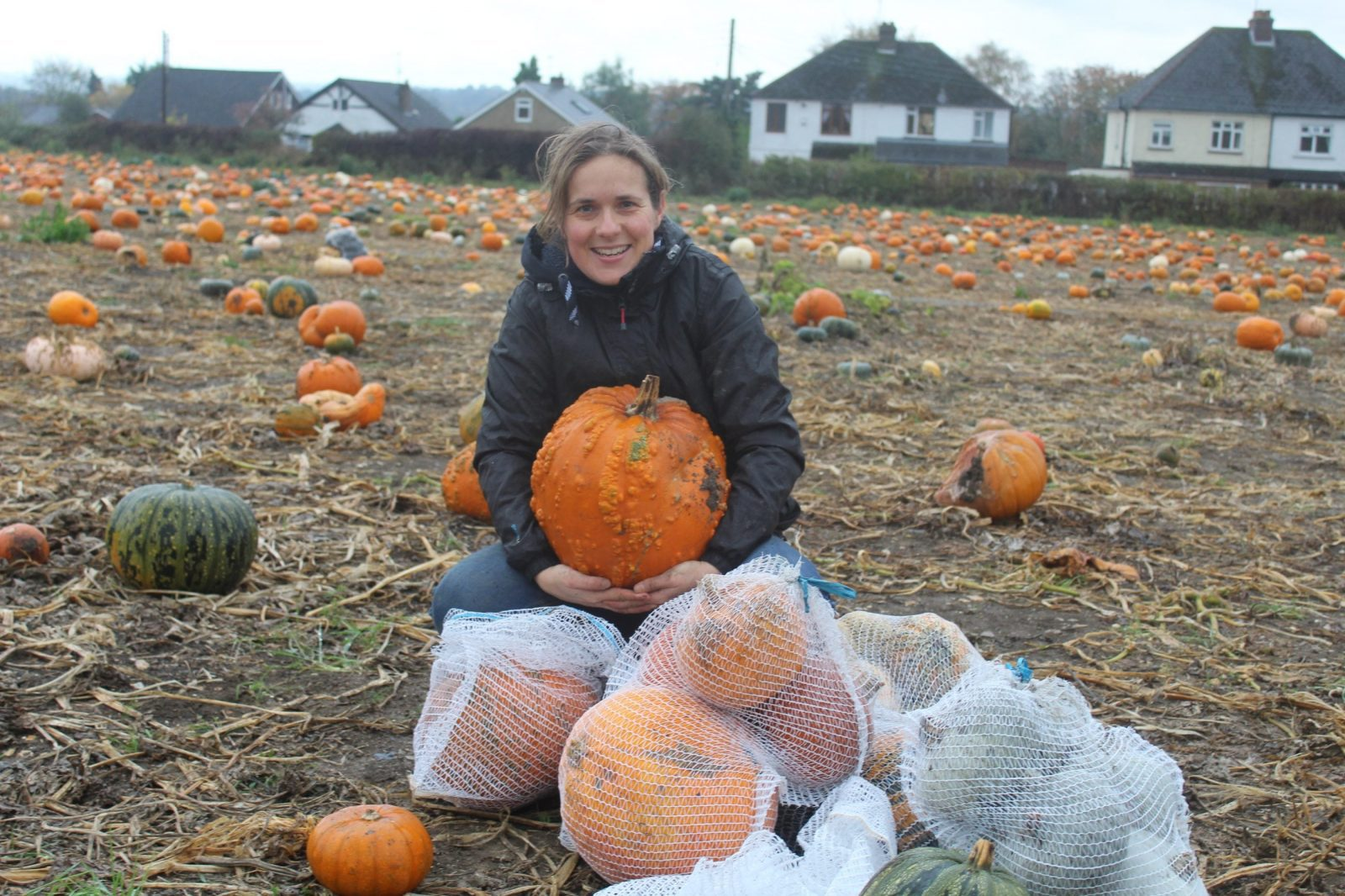 Oh my gourd! Record breaking 25 tonnes of pumpkins rescued on Kent farm